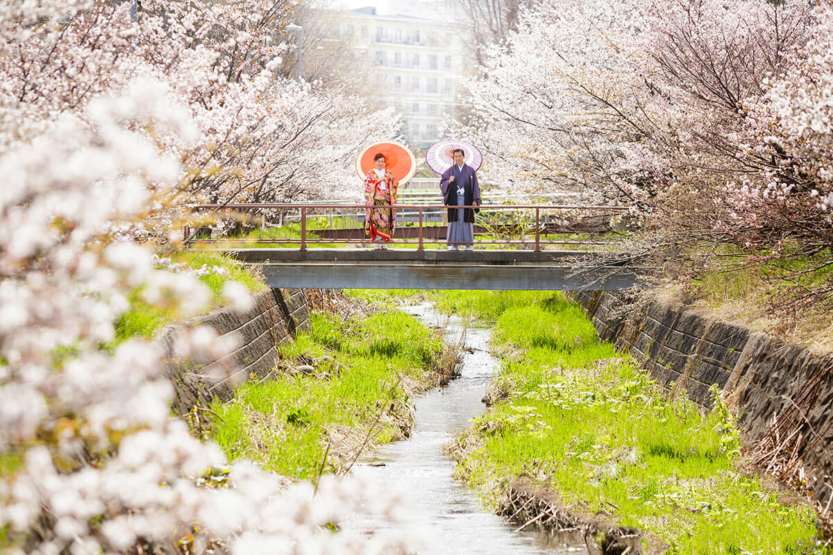 北海道 - 絢爛