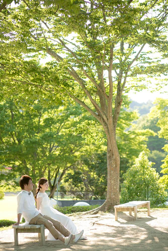 京都 - 美美