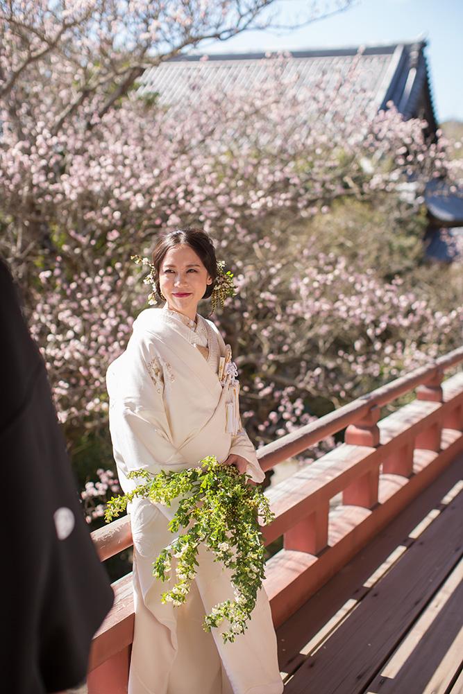太山寺/外景地[神戶/日本]