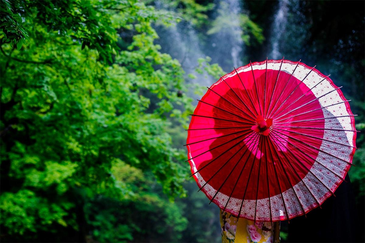 加茂山公園/外景地[新瀉/日本]
