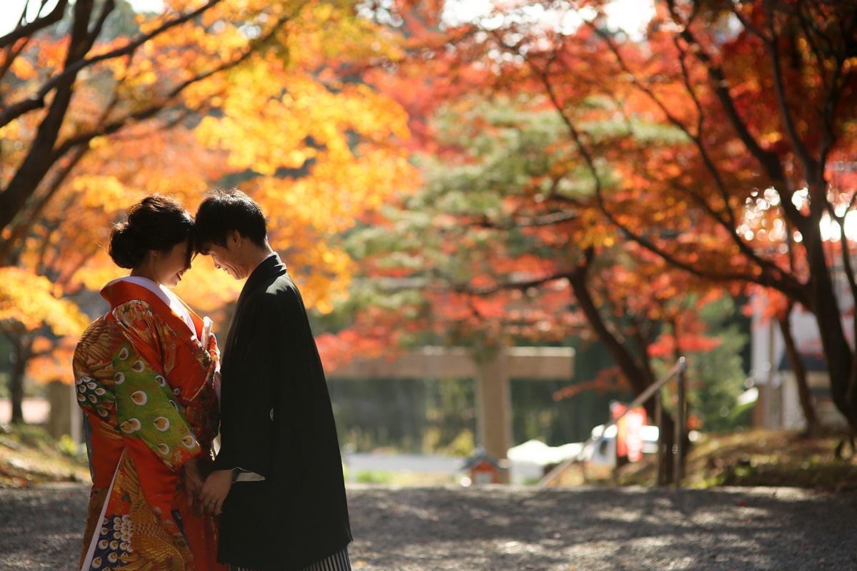 攝影師-關西-/Ryohei[關西/日本]