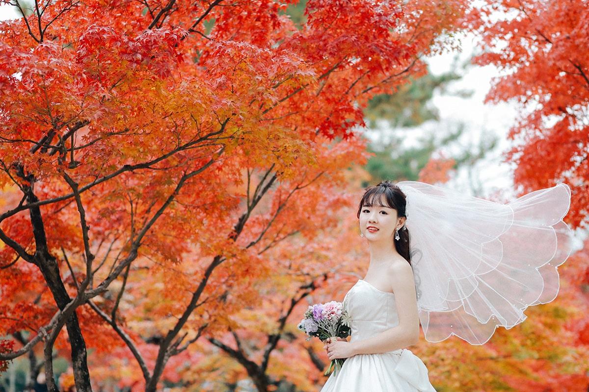 攝影師-關西-/YAMA-PI[關西/日本]